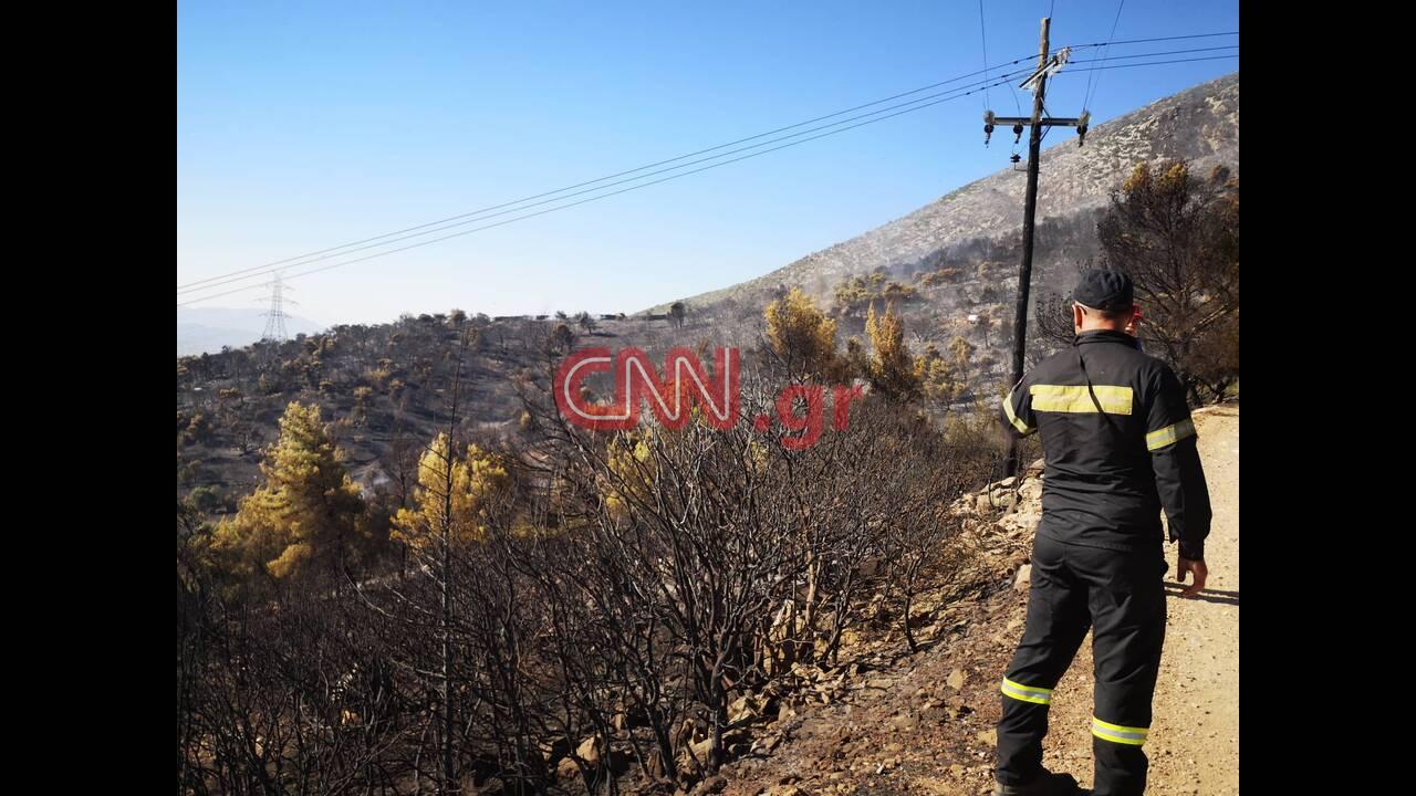https://cdn.cnngreece.gr/media/news/2019/08/12/187276/photos/snapshot/3.jpg