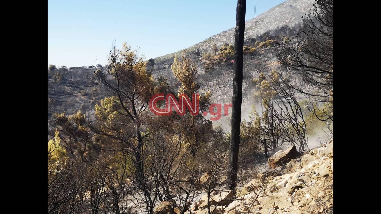 https://cdn.cnngreece.gr/media/news/2019/08/12/187276/photos/snapshot/4.jpg