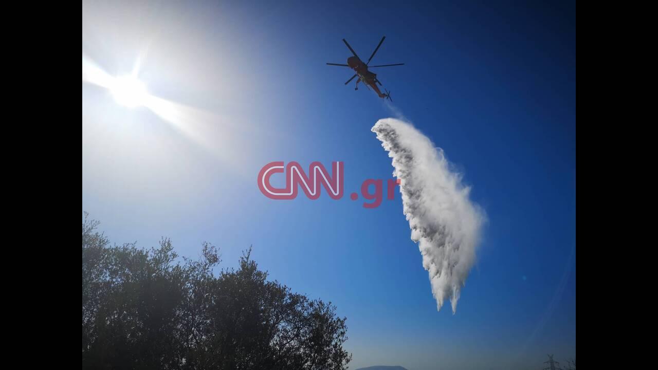 https://cdn.cnngreece.gr/media/news/2019/08/12/187276/photos/snapshot/68249990_2347185842002207_9154874743071965184_n.jpg