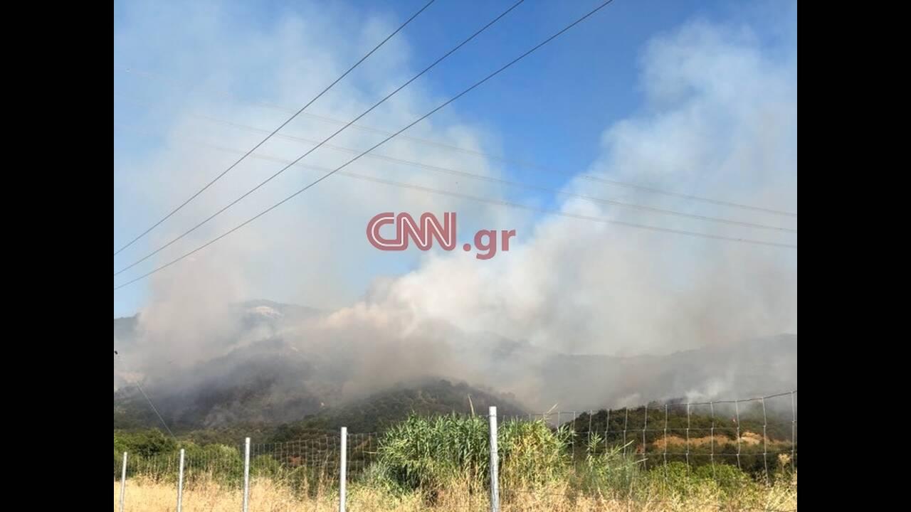 https://cdn.cnngreece.gr/media/news/2019/08/12/187306/photos/snapshot/67841294_362639134428524_4478043820340019200_n.jpg