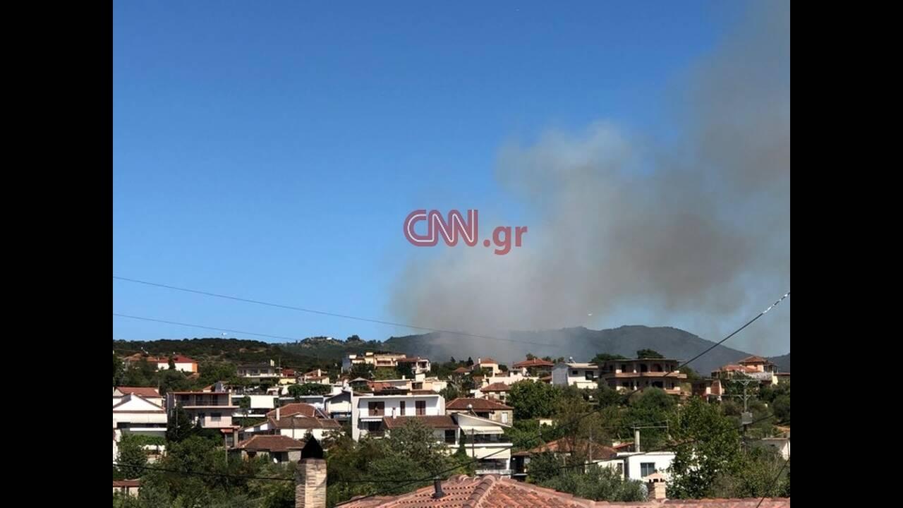 https://cdn.cnngreece.gr/media/news/2019/08/12/187306/photos/snapshot/67969651_2393387330927860_8385896874908844032_n.jpg
