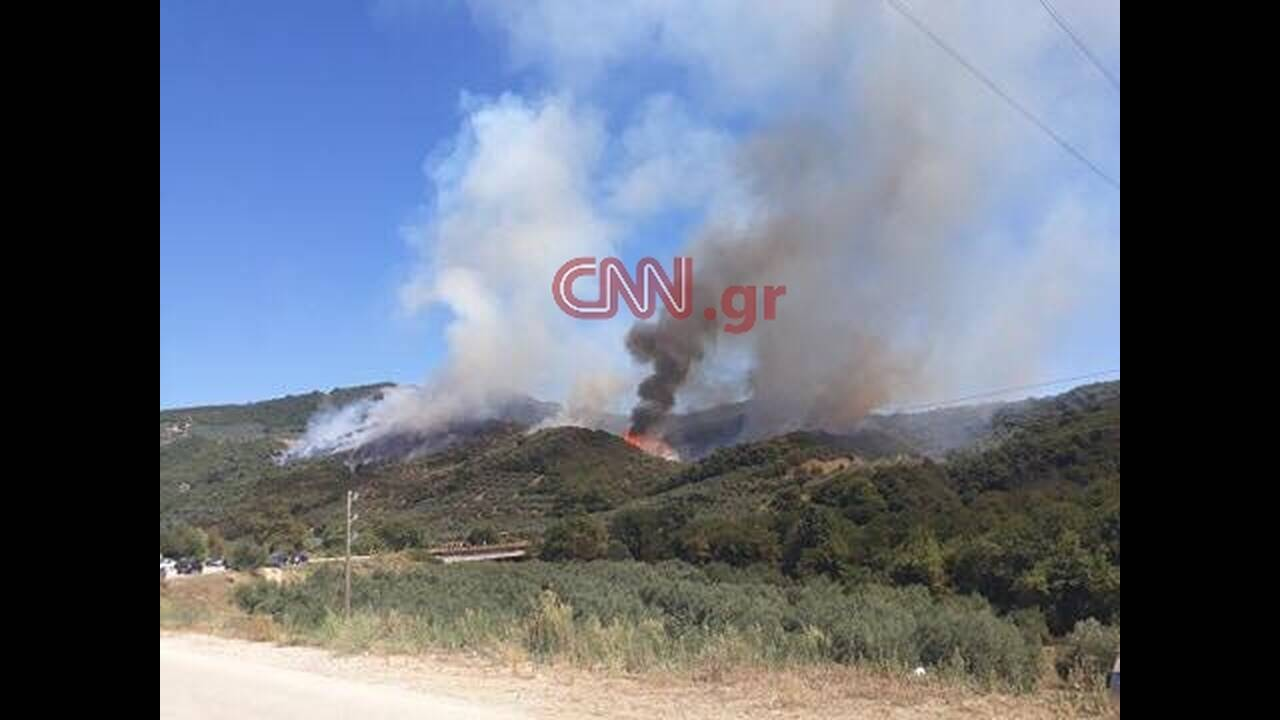 https://cdn.cnngreece.gr/media/news/2019/08/12/187306/photos/snapshot/68596751_400912577221003_2379617589442641920_n.jpg