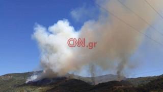 Δασική πυρκαγιά στην Άρτα