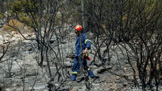 Φωτιά Υμηττός: Οι συγκλονιστικές εικόνες που μετέδωσαν Sky News και RT