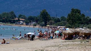 Απαγόρευση κυκλοφορίας και παραμονής την Τρίτη στο δάσος και την παραλία του Σχινιά