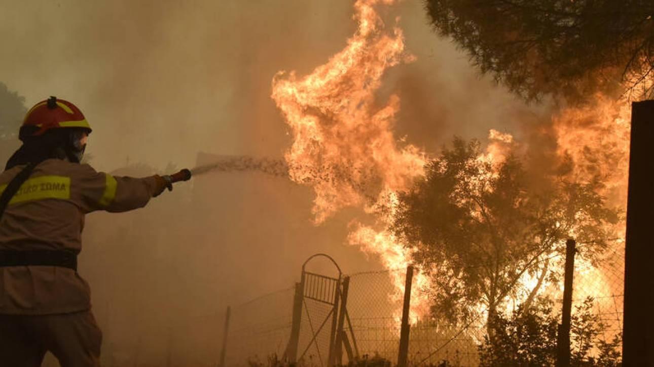 Μεγάλη πυρκαγιά στην Αχαΐα