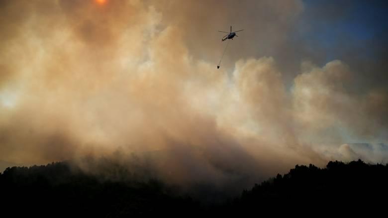 Φωτιά στην Εύβοια: Στις φλόγες δασική περιοχή στην Αγριλίτσα