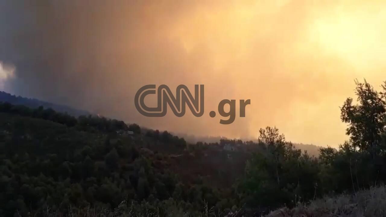 https://cdn.cnngreece.gr/media/news/2019/08/13/187362/photos/snapshot/evia3.jpg