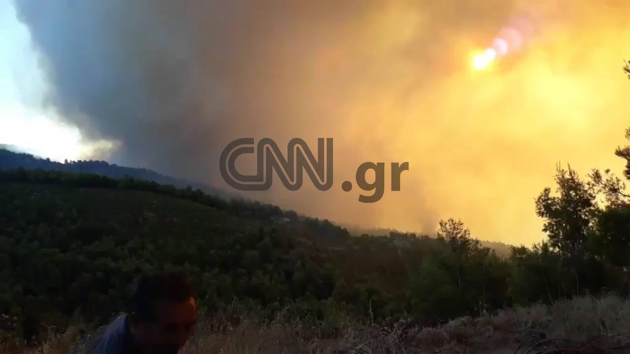https://cdn.cnngreece.gr/media/news/2019/08/13/187362/photos/snapshot/evia4.jpg