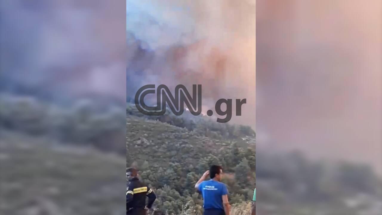 https://cdn.cnngreece.gr/media/news/2019/08/13/187362/photos/snapshot/fwtia9.jpg