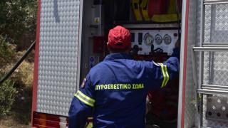 Φωτιά στη Θάσο: Ενισχύθηκαν οι δυνάμεις - Δεν απειλούνται κατοικημένες περιοχές