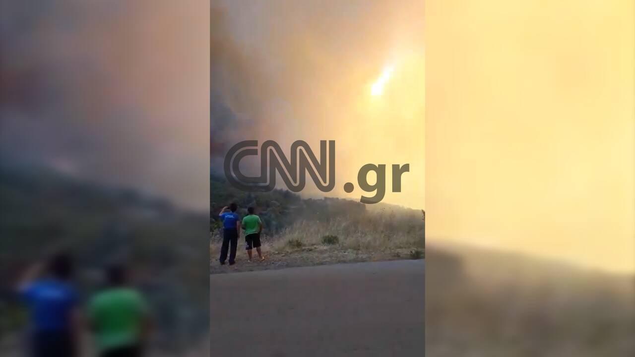 https://cdn.cnngreece.gr/media/news/2019/08/13/187365/photos/snapshot/fwtia10.jpg