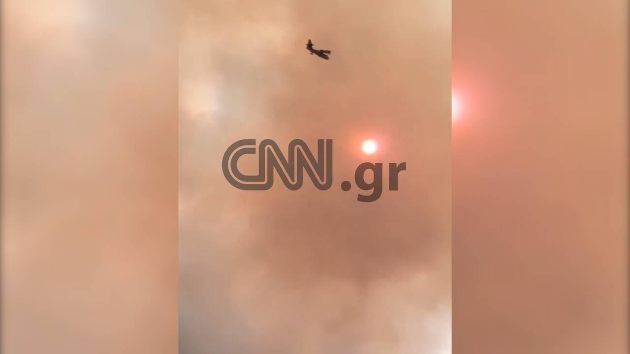 https://cdn.cnngreece.gr/media/news/2019/08/13/187365/photos/snapshot/fwtia5.jpg