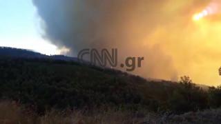Φωτιά Εύβοια: Ορατοί από το διάστημα οι καπνοί