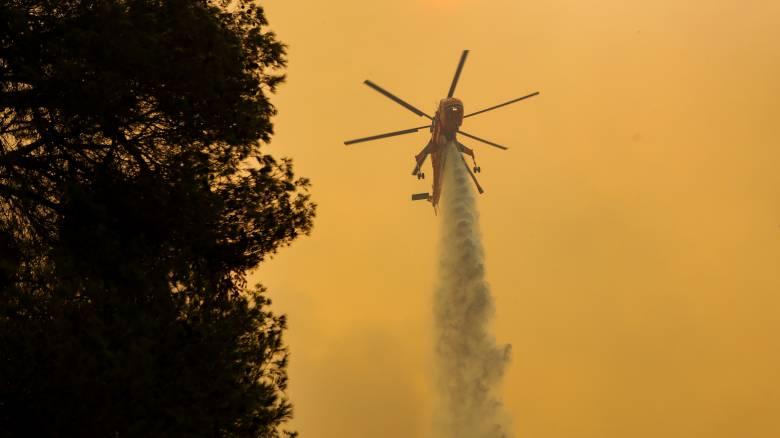 Ανεξέλεγκτη η πυρκαγιά στην Εύβοια: Νέα ενίσχυση των δυνάμεων
