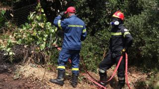 Φωτιά στη Θάσο: Τέθηκε υπό πλήρη έλεγχο
