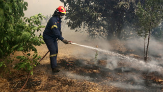 Φωτιά Εύβοια: Ζημιές σε σπίτια στο χωριό Μακρυμάλλη
