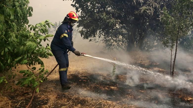 Φωτιά στη Νέα Μανωλάδα: Κλειστή η εθνική οδός Πατρών - Πύργου
