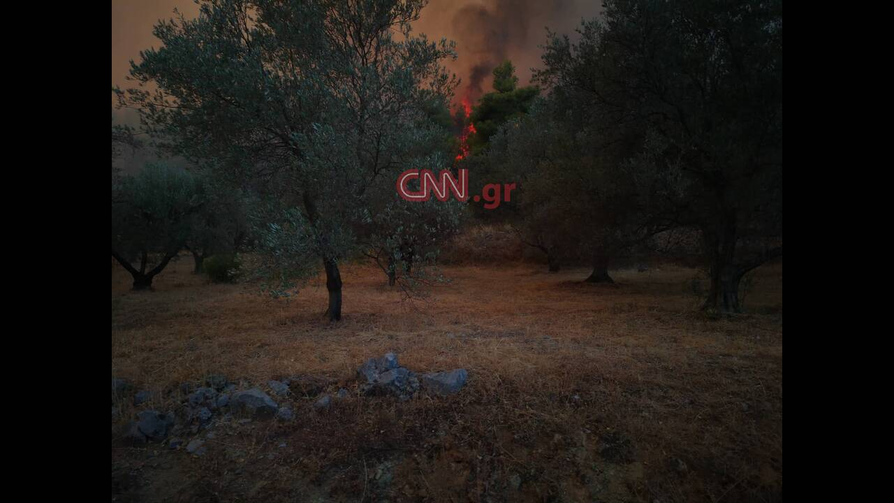 https://cdn.cnngreece.gr/media/news/2019/08/13/187445/photos/snapshot/68803038_2354293207998237_5135630483320733696_n.jpg