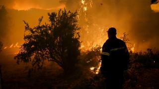 Φωτιά στην Εύβοια: Ο δήμος Αθηναίων στέλνει νερά και χυμούς στους πυροσβέστες