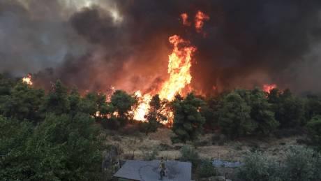 Φωτιά στην Εύβοια: Στα 11 χιλιόμετρα το πύρινο μέτωπο - Ολονύχτια μάχη με τις φλόγες