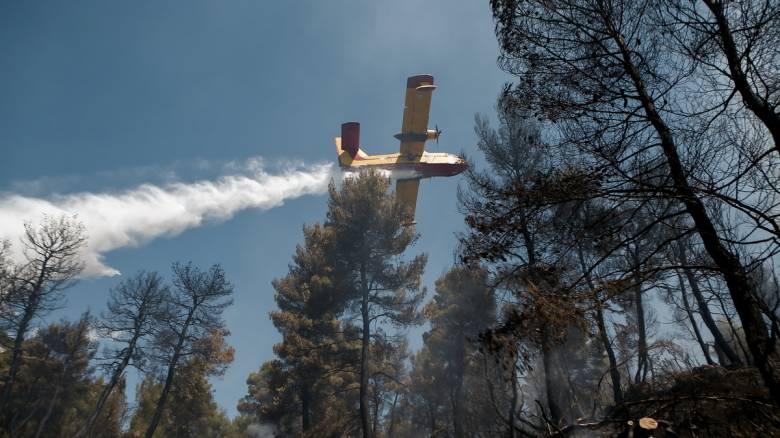 Φωτιά στην Εύβοια: Έφτασαν ιταλικά αεροσκάφη - Εμπλοκή με τα κροατικά