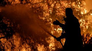 Φωτιά Εύβοια: Καρέ - καρέ η ολονύχτια μάχη με τις φλόγες