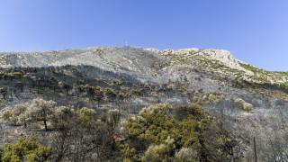 Φωτιά στον Υμηττό: Ξεκινά η καταγραφή ζημιών που υπέστησαν ραδιοφωνικοί σταθμοί