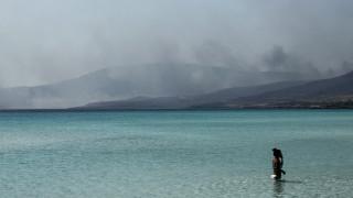 Μαρτυρία από την Εύβοια: «Βγήκαμε από τη θάλασσα γιατί γέμισε κάρβουνο»