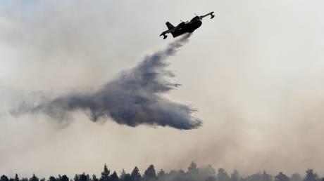 Φωτιά στην Εύβοια: Οι εναέριες «μάχες» με τις φ&