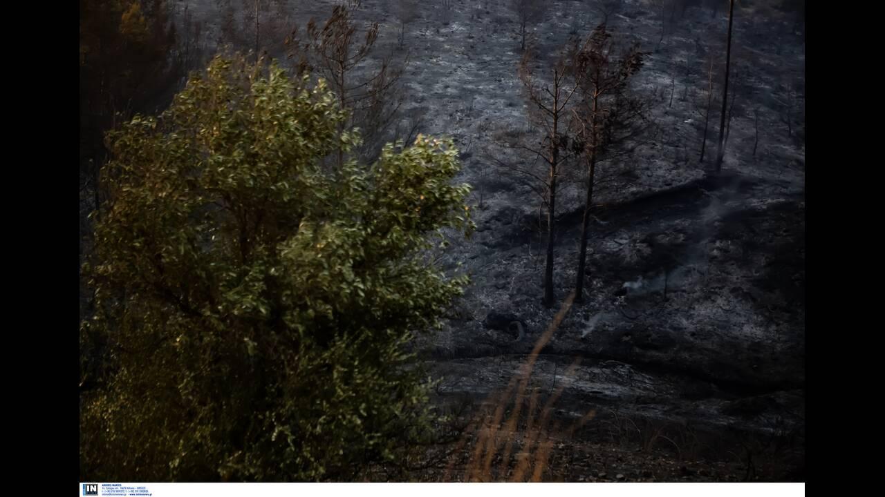 https://cdn.cnngreece.gr/media/news/2019/08/14/187567/photos/snapshot/416817.jpg