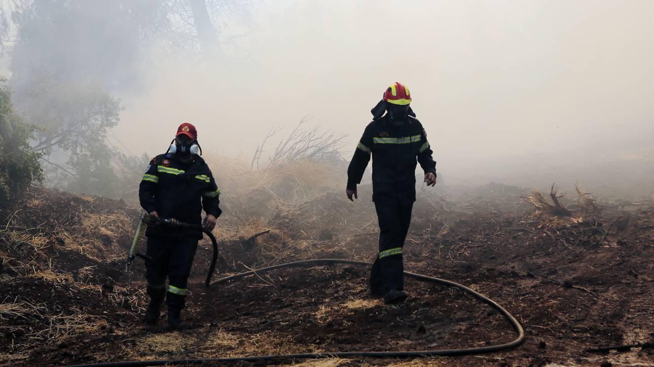 Πυροσβεστική: 31 πυρκαγιές το τελευταίο 24ωρο - Πού είναι υψηλός ο κίνδυνος για πυρκαγιά την Πέμπτη