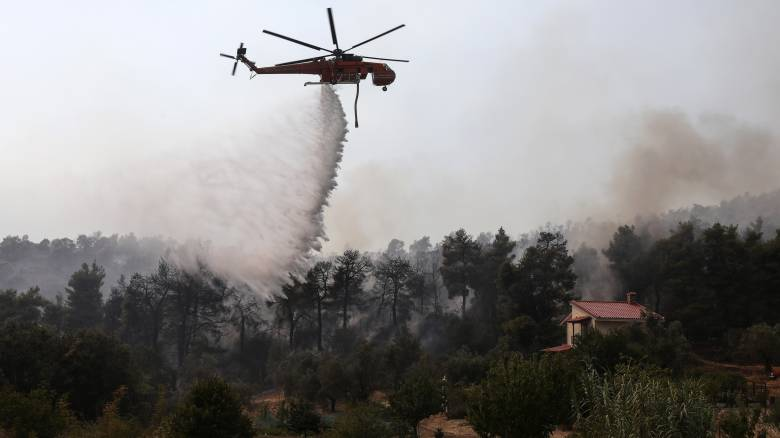 Στις φλόγες για 3η μέρα η Εύβοια: «Μάχη» για να σωθεί το Κέντρο Άγριας Ζωής