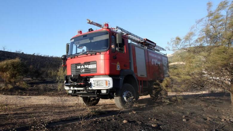 Πυρκαγιά σε δασική έκταση στα Καλάβρυτα