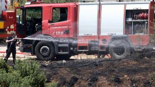 Σε ύφεση η φωτιά σε δασική έκταση στα Καλάβρυτα