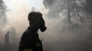 Συγκλονιστικά «κλικ» από τη φωτιά στην Εύβοια
