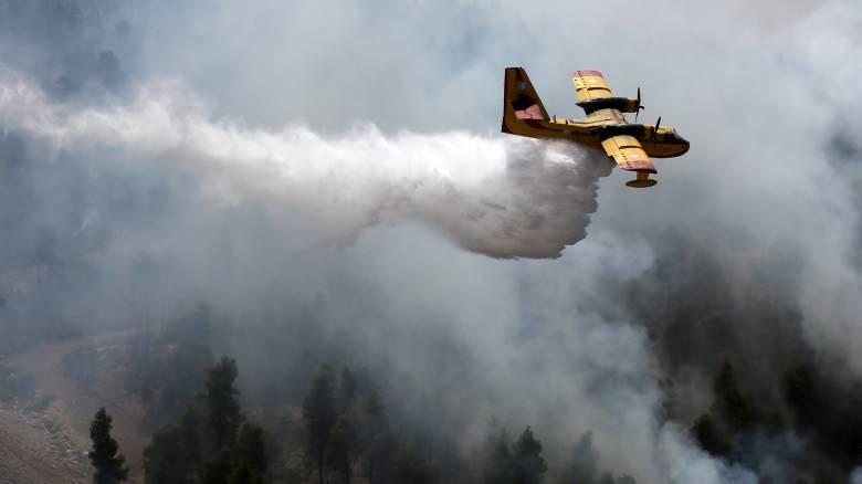 Φωτιά Εύβοια: Ενδείξεις εμπρησμού ερευνούν οι αρχές