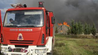 Πυρκαγιά σε περιοχή Natura στην Κέρκυρα