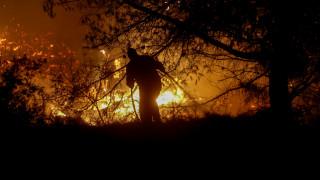 Ατελείωτο μαύρο τοπίο στην Εύβοια - Η ολονύχτια «μάχη» και τα σενάρια εμπρησμού