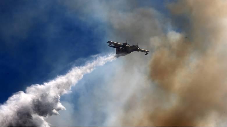 Βίντεο με πυροσβεστικό αεροσκάφος εν δράσει έδωσε στη δημοσιότητα ο Στυλιανίδης