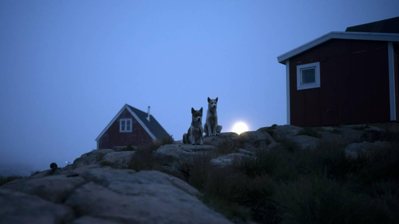 Τι απαντούν Δανοί πολιτικοί στις σκέψεις Τραμπ να αγοράσει τη Γροιλανδία