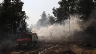 Φωτιά στην Εύβοια: Άρση τηλεφωνικού απορρήτου εξετάζουν οι αρχές για τους ύποπτους εμπρηστές