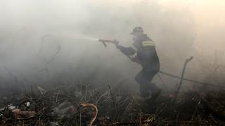Υψηλός ο κίνδυνος για πυρκαγιά και το Σάββατο - Δείτε σε ποιες περιοχές