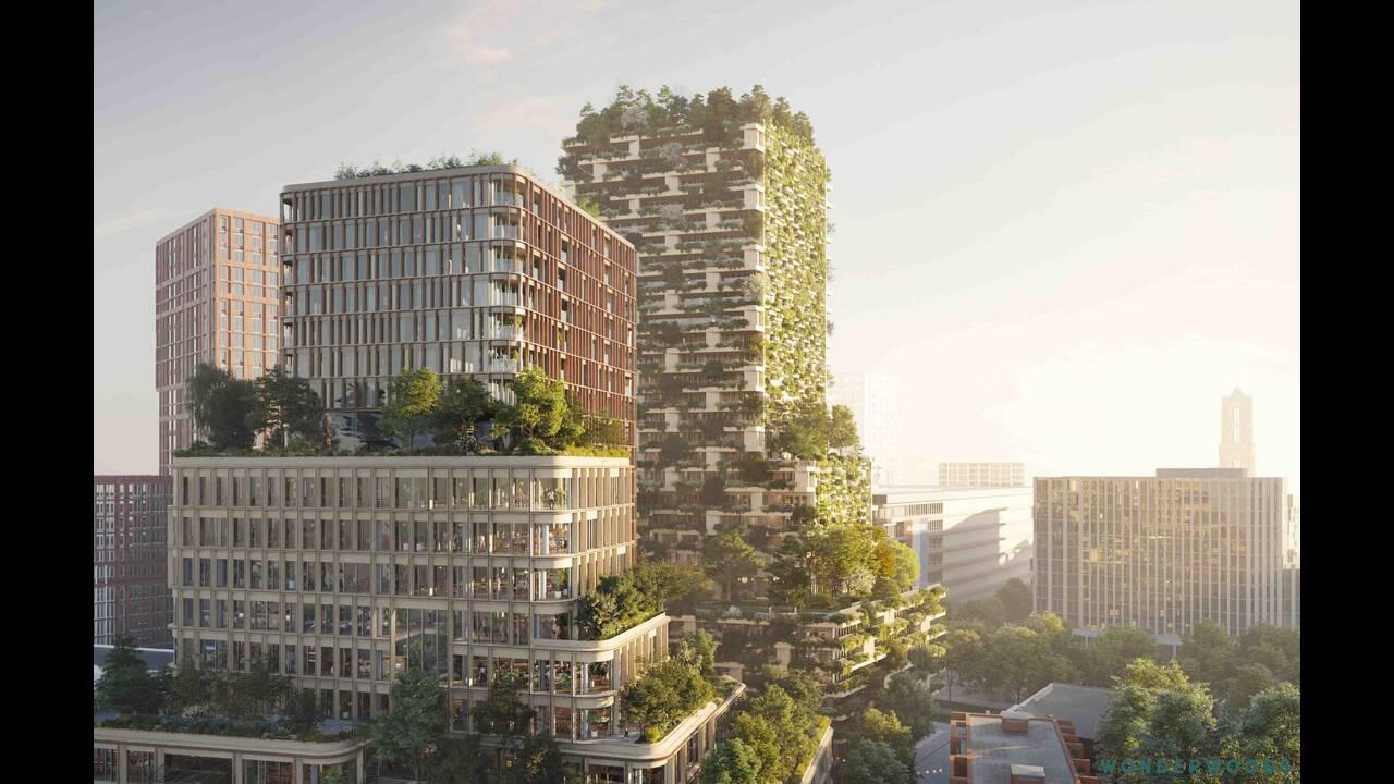 https://cdn.cnngreece.gr/media/news/2019/08/17/187777/photos/snapshot/Wonderwoods_Tower1_Vertical-Forest-designed-by-Stefano-Boeri-Architetti_65_cam-1a.jpg