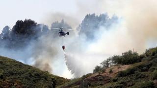 Περιβαλλοντική τραγωδία στο Γκραν Κανάρια: Στάχτη 60.000 στρέμματα
