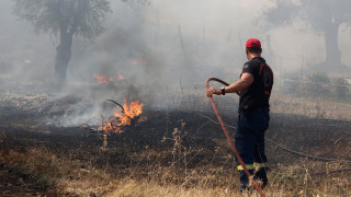 Υπό μερικό έλεγχο η πυρκαγιά στη Φλώρινα