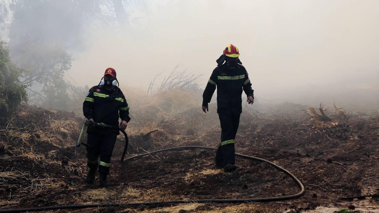 Οριοθετήθηκε η φωτιά στη Σαλαμίνα