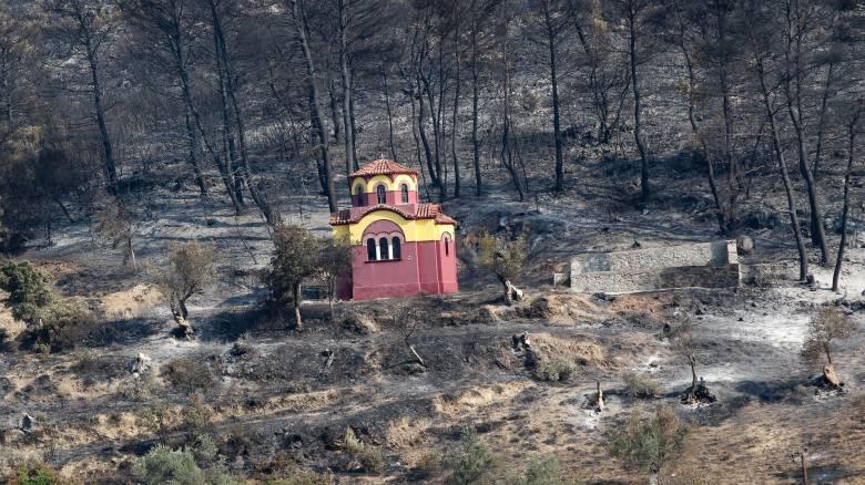Φωτιά στην Εύβοια: Τι δηλώνει ο 33χρονος ύποπτος για εμπρησμό