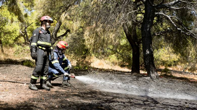 Υπό έλεγχο η πυρκαγιά στις Καρυές Σαμοθράκης