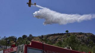 Βοιωτία: «Μάχη» με τις φλόγες σε δύο μέτωπα